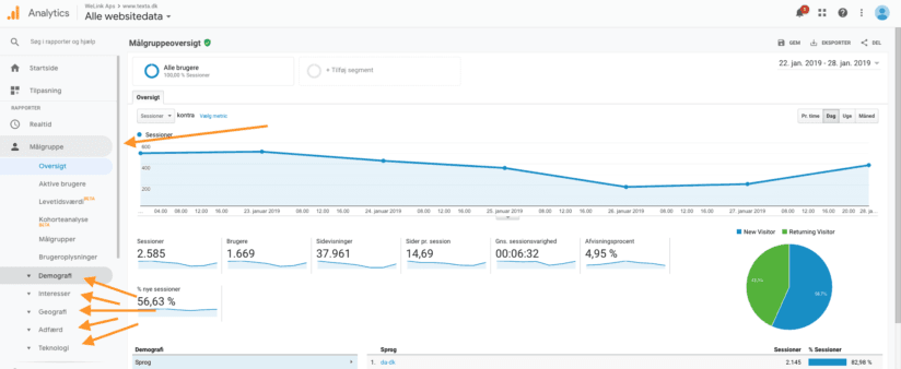Google Analytics demografi